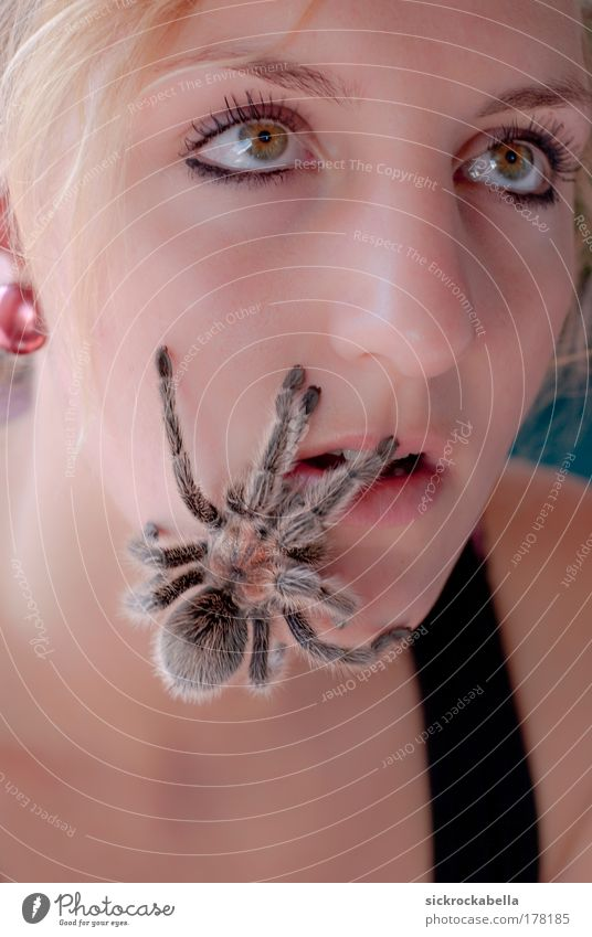 Woman Human being Youth (Young adults) Animal Feminine Friendship Fear Adults Portrait photograph Creepy Upward Wild animal Spider Nursery web spider Young woman Love of animals