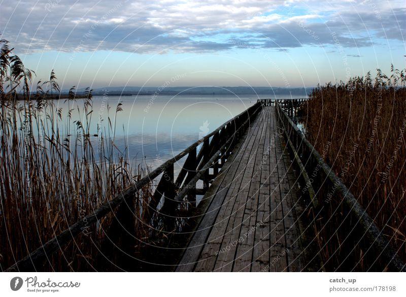 Nature Water Sky Clouds Lake Landscape Hope Peace Footbridge Lakeside Optimism Bog Marsh