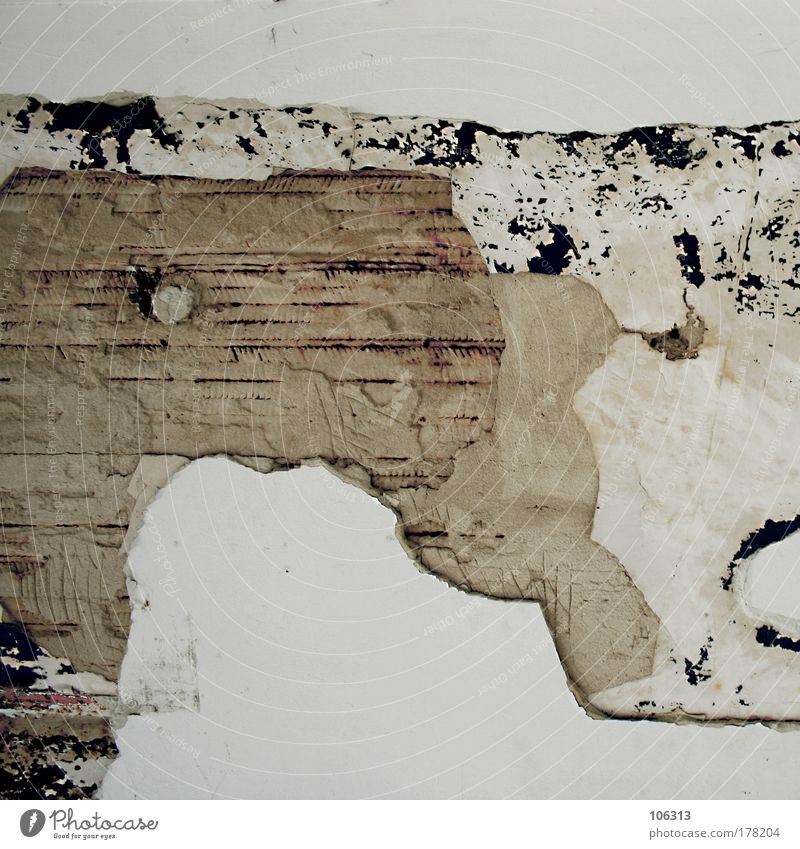 Old White House (Residential Structure) Wall (building) Wood Dye Brown Facade Concrete Uniqueness To fall Derelict Decline Ruin Shabby Plaster