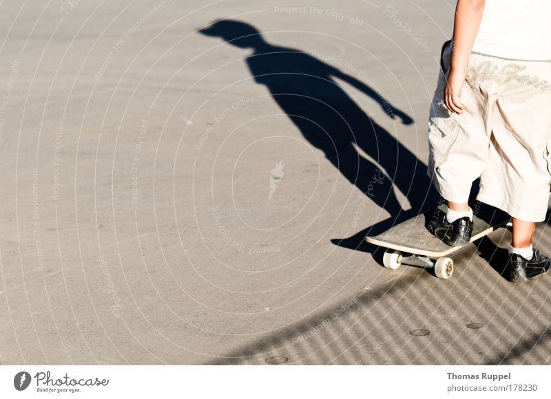 skateboarding Colour photo Subdued colour Exterior shot Copy Space left Copy Space bottom Day Shadow Silhouette Looking away Leisure and hobbies Skateboard