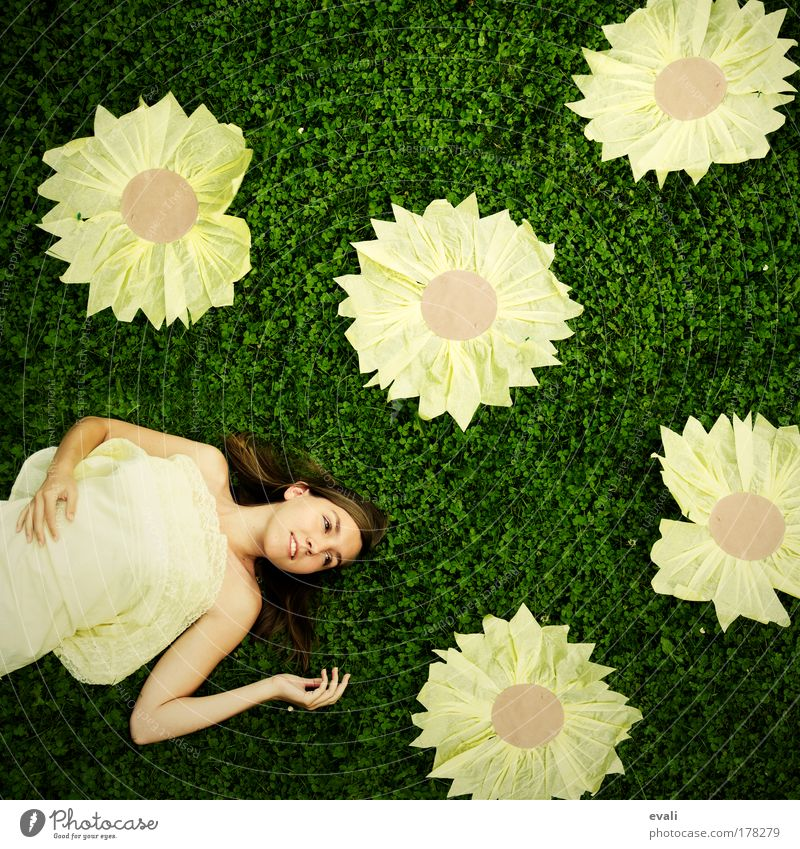Woman Human being Hand Youth (Young adults) Flower Green Summer Face Yellow Meadow Joy Feminine Blossom Grass Spring Garden