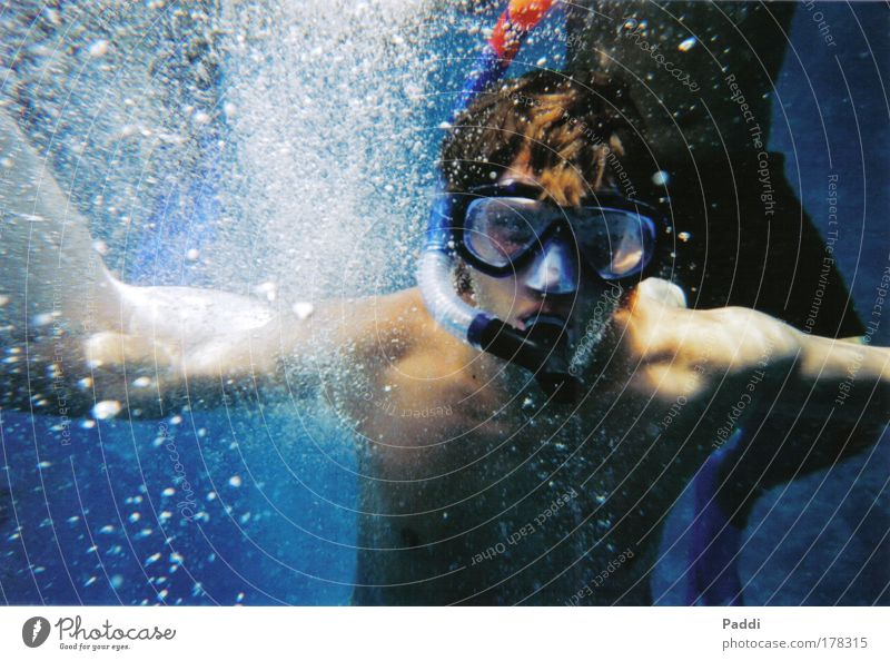 In the rush of depth Colour photo Exterior shot Close-up Underwater photo Copy Space left Day Light Shadow Contrast Reflection Blur Motion blur Wide angle