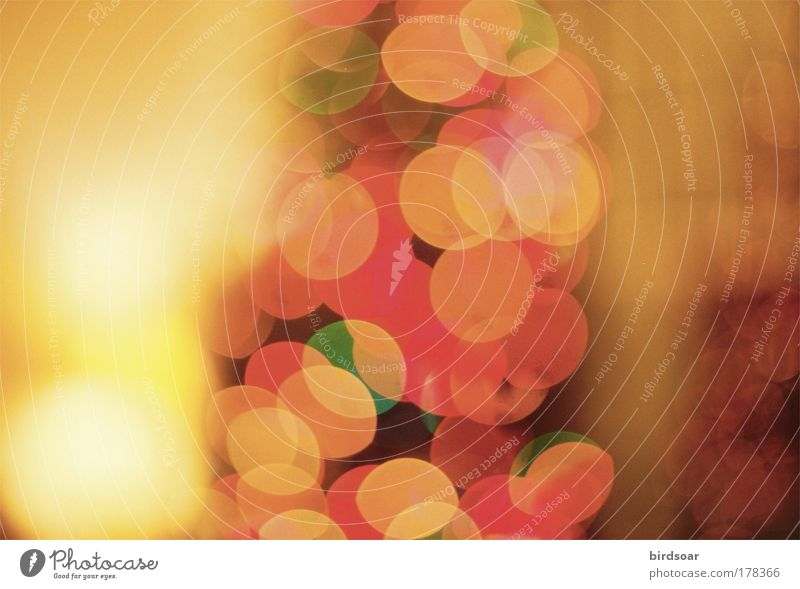 Is it? 35mm Film Analog Christmas & Advent Lamp Vacation & Travel Winter Blur unfocused
