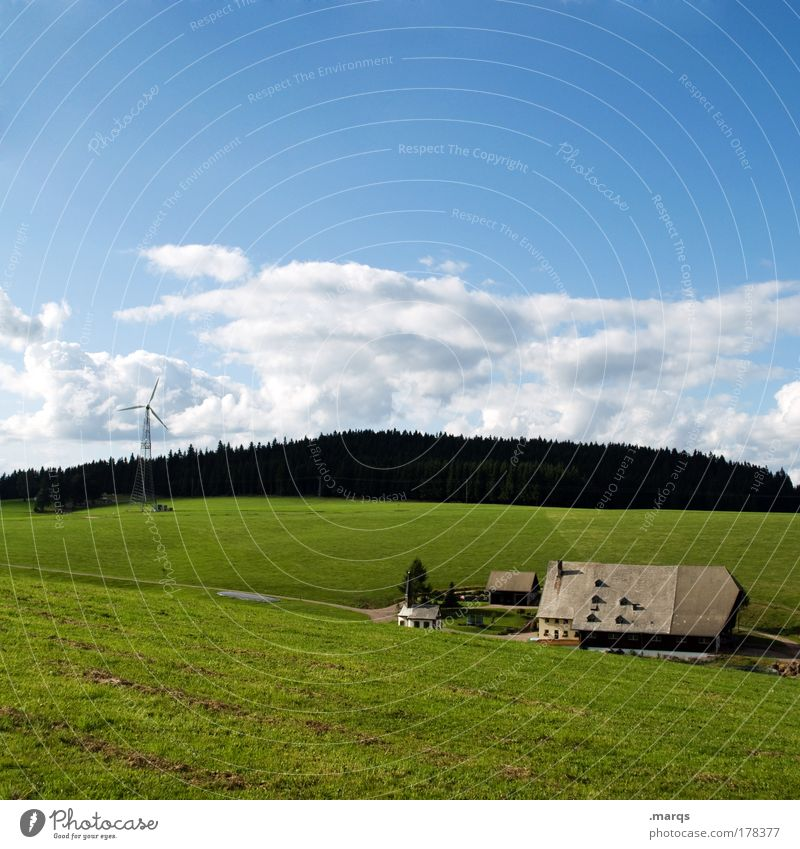 Summer Vacation & Travel Forest Landscape Field Renewable energy Energy industry Tourism Living or residing Natural Idyll Farm Beautiful weather Juicy