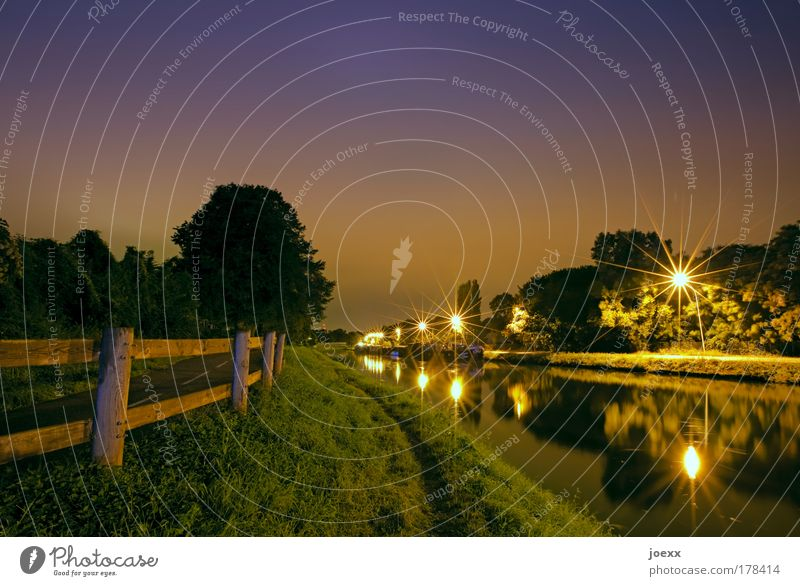 night idyll Colour photo Subdued colour Copy Space top Night Artificial light Long exposure Nature Night sky Tree Grass Meadow Port City Deserted