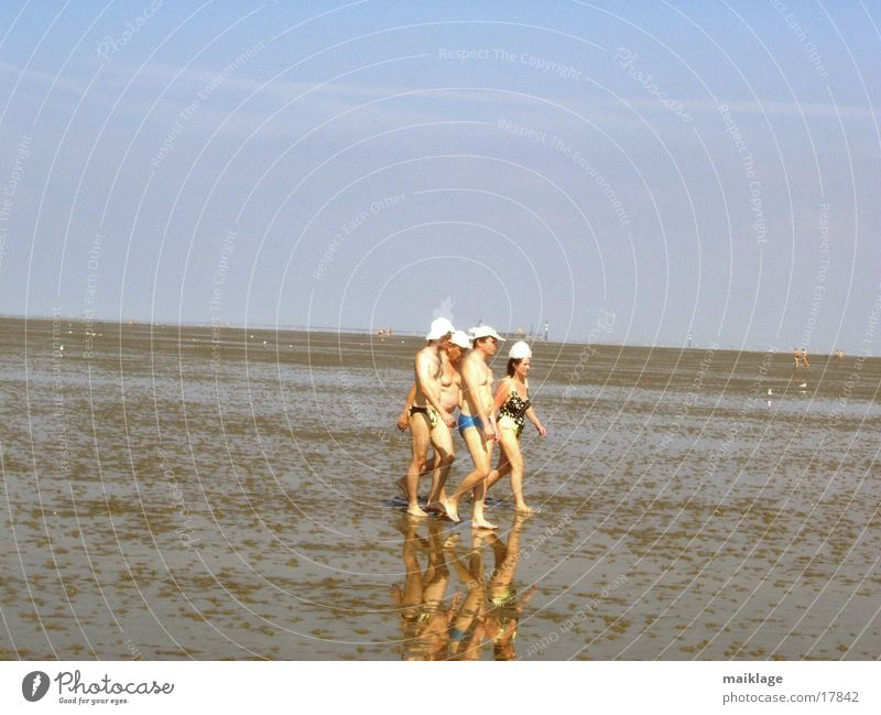 Woman Man Sun Ocean Summer Group To go for a walk Cap Mud flats Swimming trunks Swimsuit Vacation mood Walk along the tideland