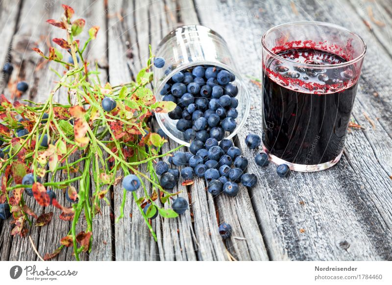 blueberries Food Fruit Nutrition Organic produce Vegetarian diet Glass Summer Autumn Plant Wild plant Wood Make Hip & trendy Juicy Leisure and hobbies Nature