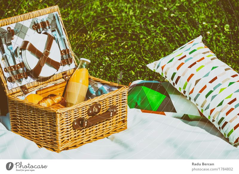 Picnic Basket Food On White Blanket With Pillows In Summer Nature Vacation & Travel Green Healthy Eating Relaxation Grass Fruit Park Leisure and hobbies