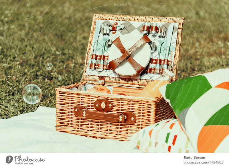 Picnic Basket Food On White Blanket And Soap Bubbles Nature Vacation & Travel Colour Summer Green Healthy Eating Relaxation Spring Grass Lifestyle Freedom Brown