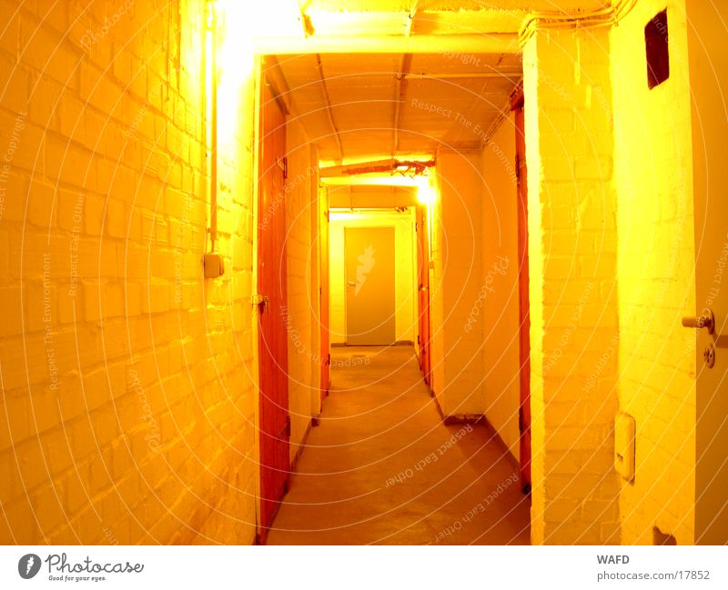 Wall (building) Room Architecture Door Cellar Subsoil Light switch