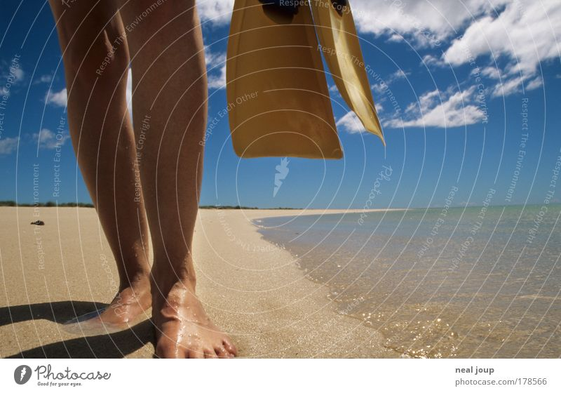 The perfect beach Colour photo Exterior shot Worm's-eye view Aquatics Dive Snorkeling Legs Feet 1 Human being Beach Ocean Turquoise Bay Western Australia