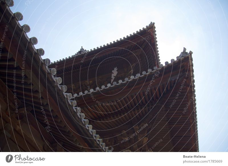 temple roofs Sky Summer Beautiful weather Japan Manmade structures Architecture Temple Roof Eaves Tourist Attraction Wood Esthetic Sharp-edged Exotic Brown