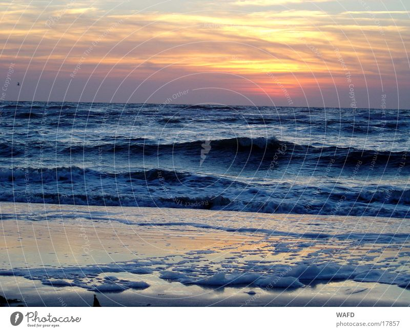 Day at the sea St. Peter-Ording Beach Waves Ocean Sunset North Sea
