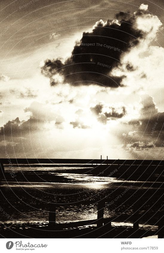 longing Ocean High tide Clouds Sunset St. Peter-Ording Sunbeam Autumn Beach Horizon Reflection Light Back-light North Sea Disturbed Black & white photo Sky