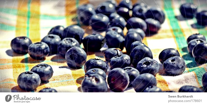 Blue Movement Small Healthy Fruit Natural Food Fresh Nutrition Sweet Round To enjoy Appetite Joie de vivre (Vitality) Delicious Organic produce