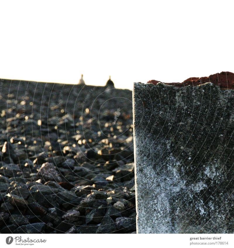 Human being Stone Sadness Masculine Concrete Broken Destruction Guilty Concentration camp Beech wood