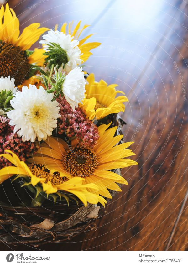 autumn decoration Autumn Autumn market Decoration Sunflower Flower Table Gift Yellow Multicoloured Bouquet Beautiful Fragrance