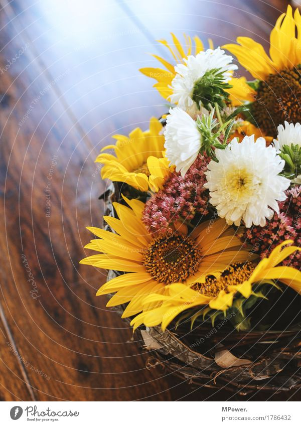 autumn decoration Autumn flower arrangement blossoms Autumn market Decoration Sunflower Flower Table Gift Yellow Multicoloured Bouquet Beautiful Fragrance