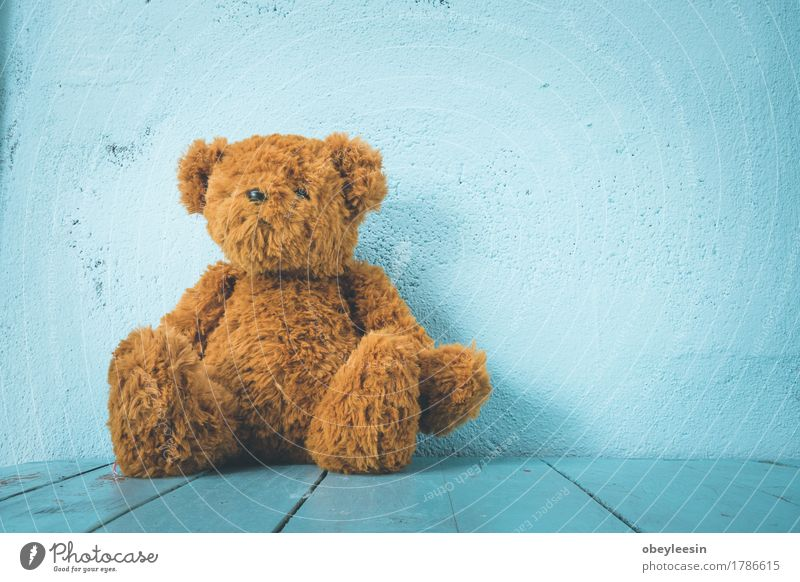 Teddy bear Style Joy Toys Doll Design Art Life Colour photo Close-up Copy Space right Day Wide angle Looking into the camera
