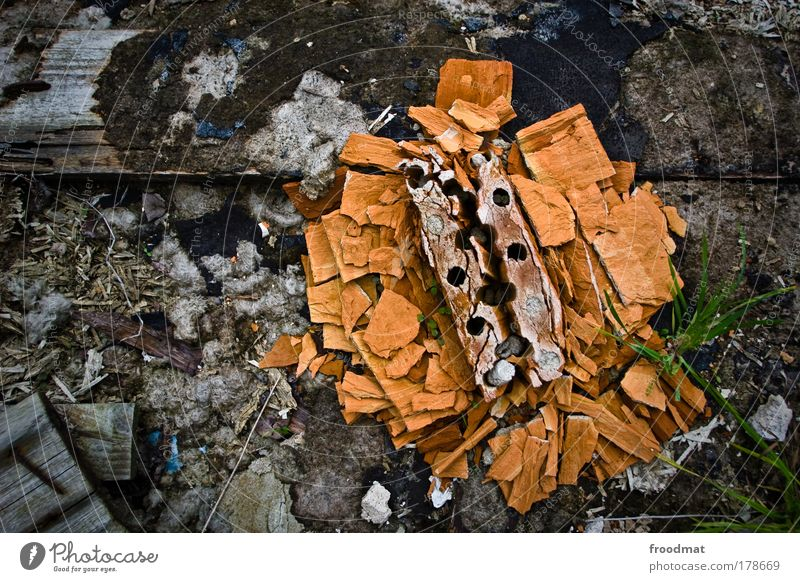 Old Flower Relaxation Stone Moody Orange Time Power Dirty Broken Gloomy Change Might Decoration Transience Simple