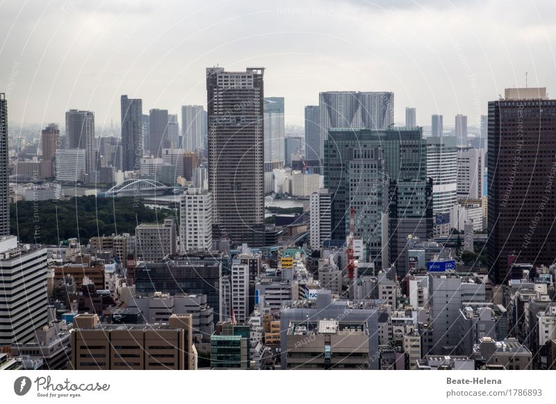 Tokyo's dizzying heights Lifestyle Shopping Luxury Living or residing Flat (apartment) Capital city Downtown High-rise Bank building Growth Exceptional