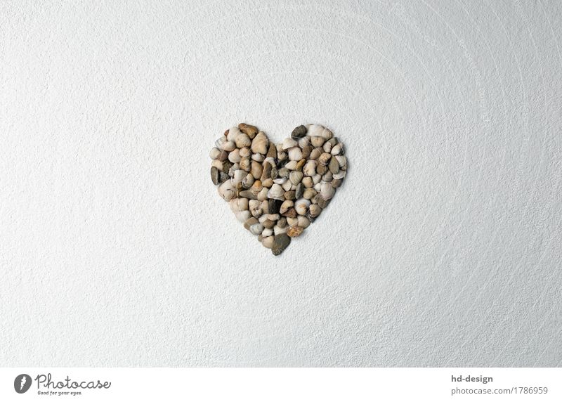 Heart on textured plaster Decoration Stone Sign Sympathy Love Infatuation Romance Happy Mussel Plaster structural plaster clam heart Pebble Mother's Day