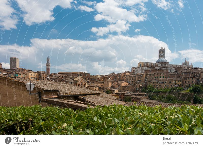 oh siennnnnnnaaaaaaaaaaaaaaaaaaaa! Siena Town Downtown Old town Skyline Deserted House (Residential Structure) Dome Tower Manmade structures Building