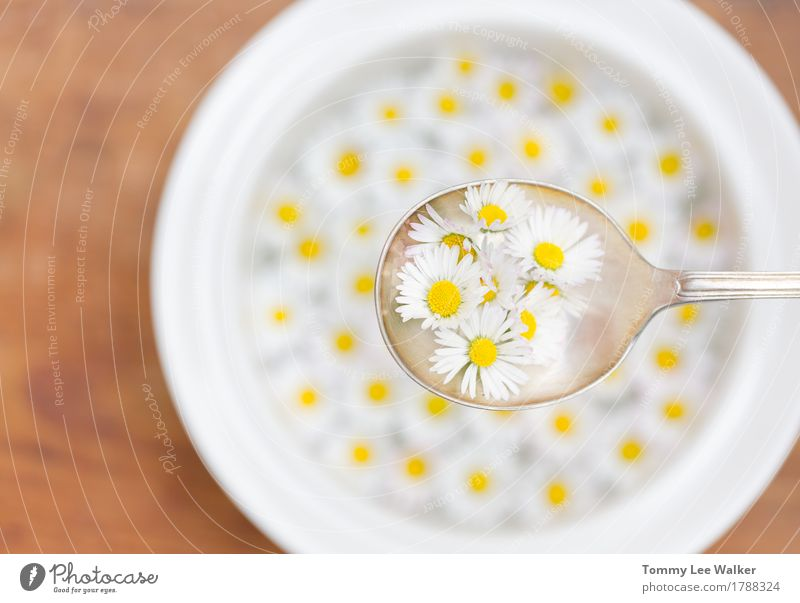 Light breakfast Summer Beautiful Healthy Eating White Flower Joy Dish Love Emotions Freedom Fruit Living or residing Dream Fresh