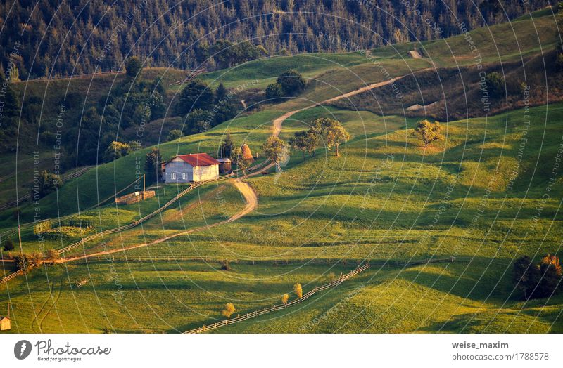 September rural scene in Carpathian mountains. Summer Mountain House (Residential Structure) Environment Nature Landscape Earth Autumn Tree Grass Meadow Forest