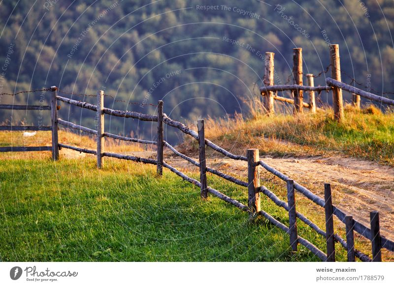 September rural scene in Carpathian mountains Beautiful Summer Mountain Environment Nature Landscape Earth Sunrise Sunset Autumn Tree Grass Meadow Forest Hill
