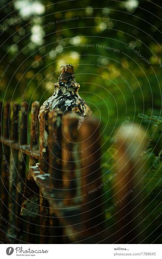 Old Green Dark Brown Transience Fence Decline Rust Nostalgia Metalware Garden fence