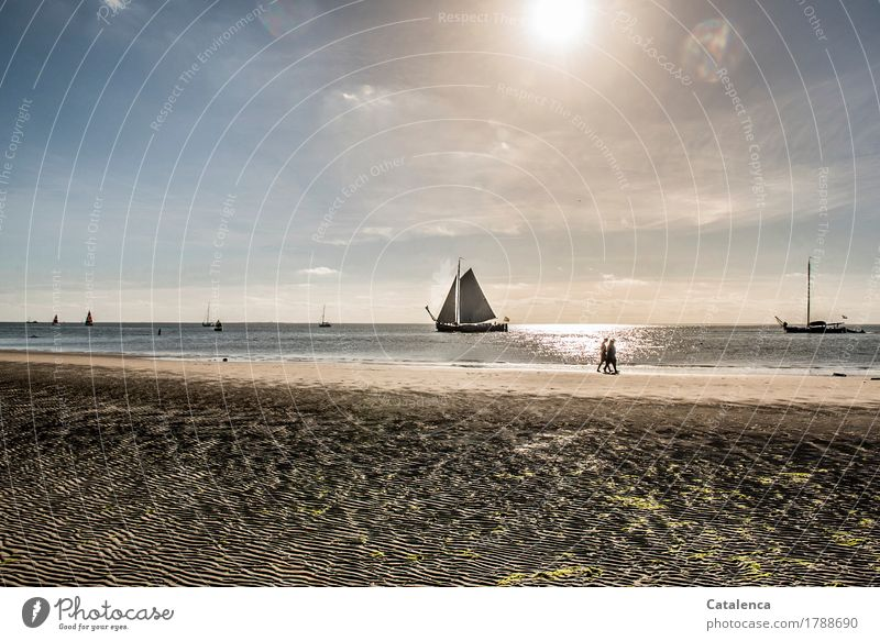 leak Sailing Vacation & Travel Beach Human being Androgynous 2 Landscape Sand Water Cloudless sky Sun Summer North Sea Mud flats sailing ships Glittering