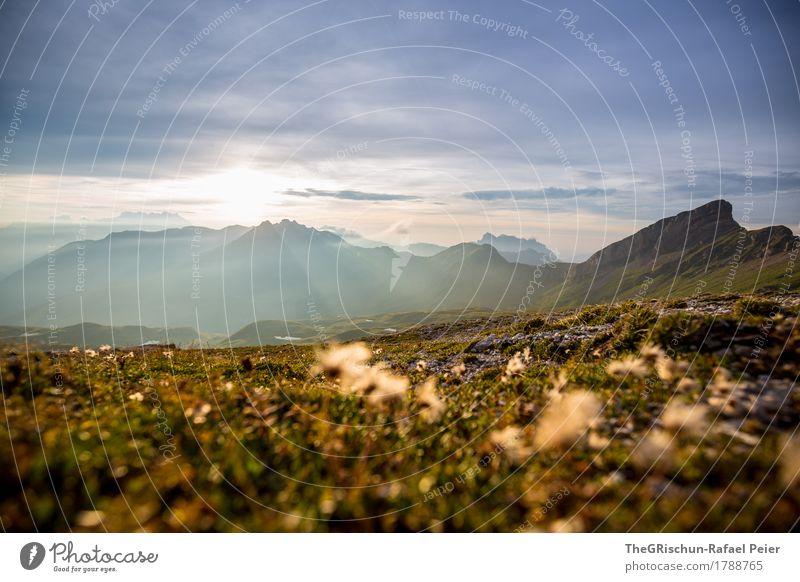 mood Environment Nature Landscape Blue Brown Gray Green Mountain Switzerland Alps Vantage point Panorama (View) Grass Plant Earth Stone Peak Sun Sunbeam Sunset