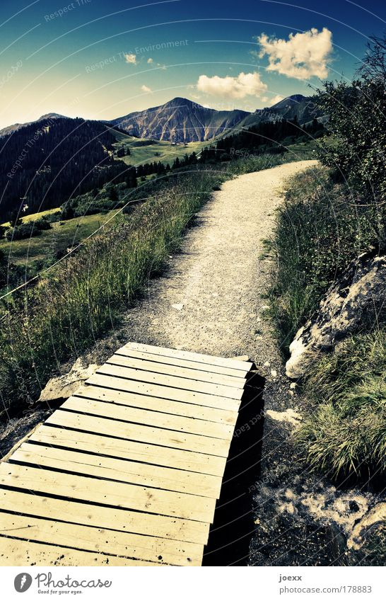 Nature Water Sky Plant Summer Bridge Vacation & Travel Calm Mountain Wood Lanes & trails Landscape Walking Horizon Earth