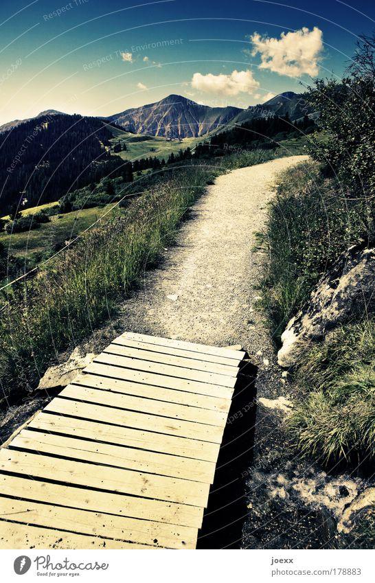 Nature Water Sky Plant Summer Bridge Vacation & Travel Calm Mountain Wood Lanes & trails Landscape Walking Horizon Earth