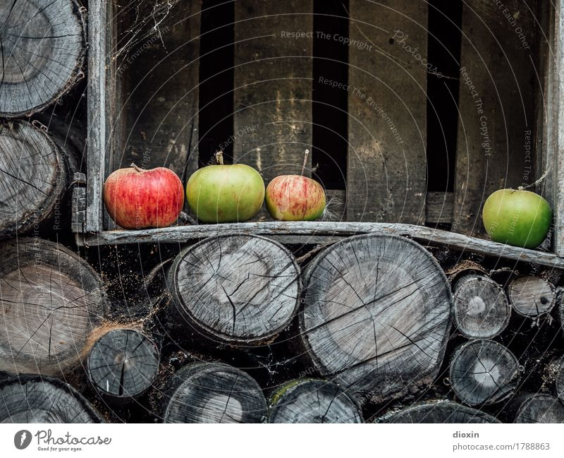 autumn Food Fruit Apple Nutrition Organic produce Vegetarian diet Autumn Wooden box Firewood Stack of wood Healthy Delicious Natural To enjoy Colour photo
