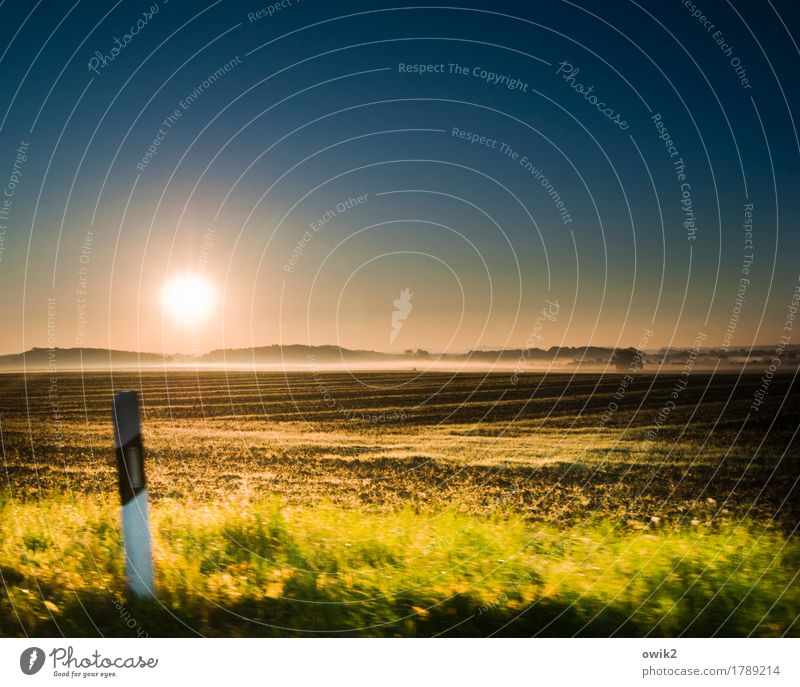 over Environment Nature Landscape Plant Earth Air Cloudless sky Horizon Autumn Climate Beautiful weather Fog Tree Grass Bushes Field Forest Motoring Illuminate