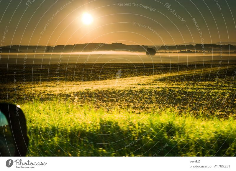 tour Environment Nature Landscape Plant Elements Earth Cloudless sky Horizon Autumn Climate Beautiful weather Fog Tree Grass Bushes Field Forest Motoring