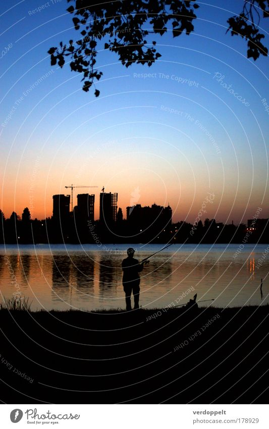 big fish Human being Man Nature Beautiful Blue City Joy Loneliness Life Relaxation Sadness Moody Wait Adults Pink Masculine
