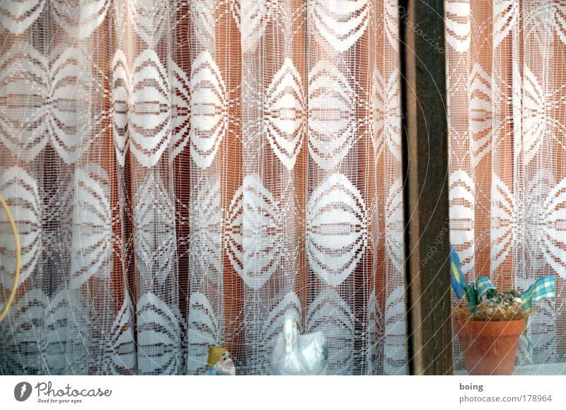 Window Flat (apartment) Lifestyle Decoration Shows Living or residing Drape Curtain Swan Flowerpot Shop window Window board Houseplant View from a window Window seat Interior designer