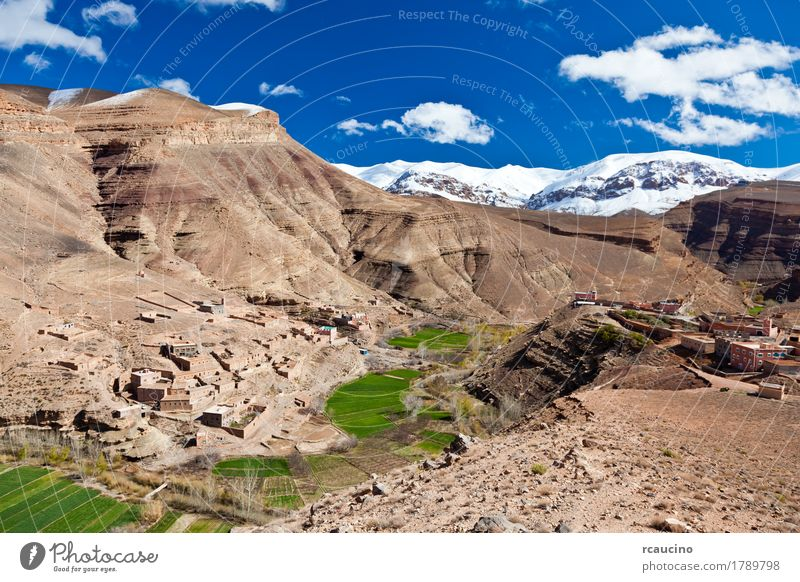 Morocco: landscape of Dades Valley in Atlas mountain Snow Mountain Nature Landscape Sky Clouds Tree Oasis Village Blue Green Africa atlas dades Horizontal Kabah