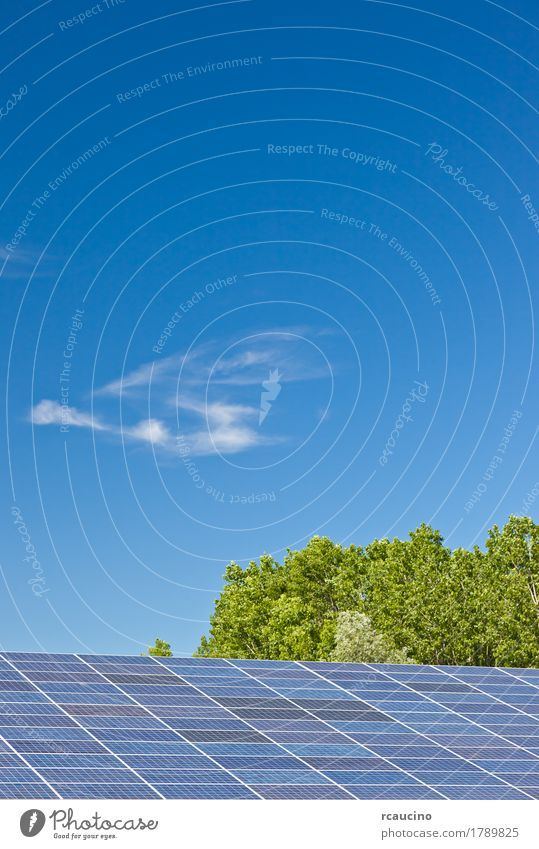 Photovoltaic panels in a solar power plant over a blue sky. Industry Solar Power Environment Sky Clouds Climate Natural Clean Blue Green Energy Alternative