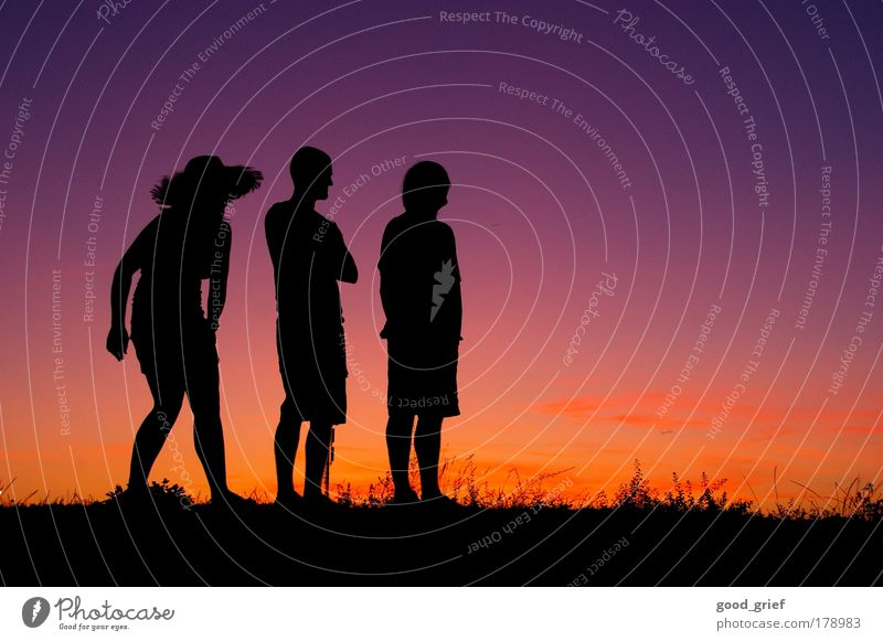 summer vacation Colour photo Multicoloured Exterior shot Copy Space right Evening Twilight Sunrise Sunset Profile Looking away Human being Masculine Young woman