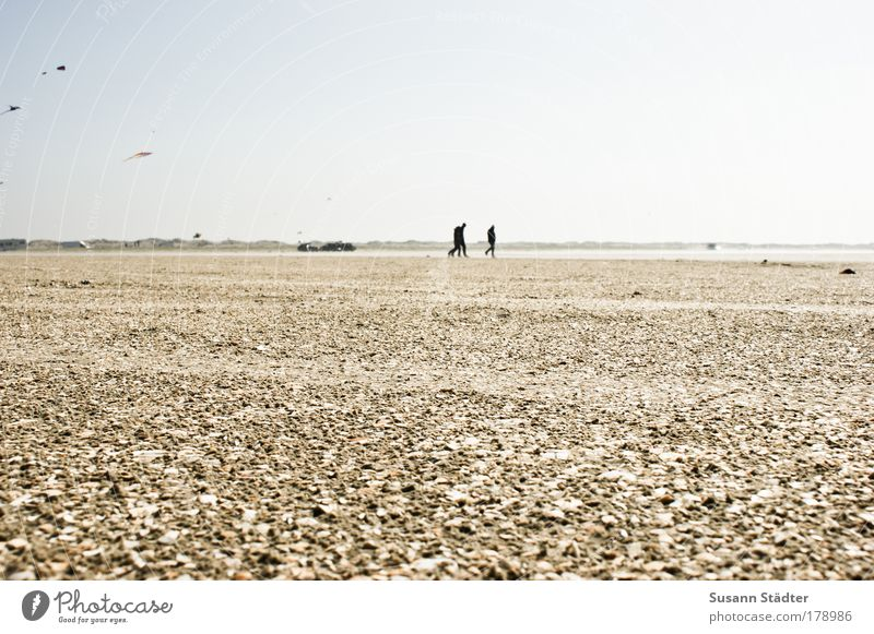 Human being Beach Calm Far-off places Relaxation Landscape Cold Freedom Sand Coast Stone Bright Horizon Earth Walking Trip
