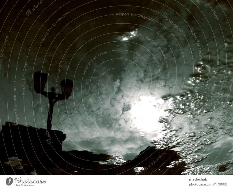 It's your time. Underwater photo Evening Twilight Night Shadow Contrast Silhouette Reflection Back-light Environment Climate Climate change Bad weather Dirty