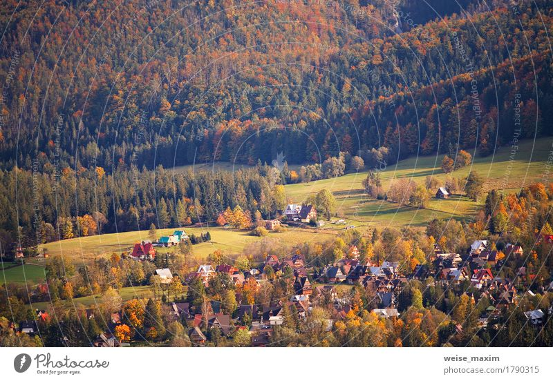 Sunny October day in Malopolska mountain village Nature Vacation & Travel Plant Green Tree Landscape Red House (Residential Structure) Forest Mountain Street