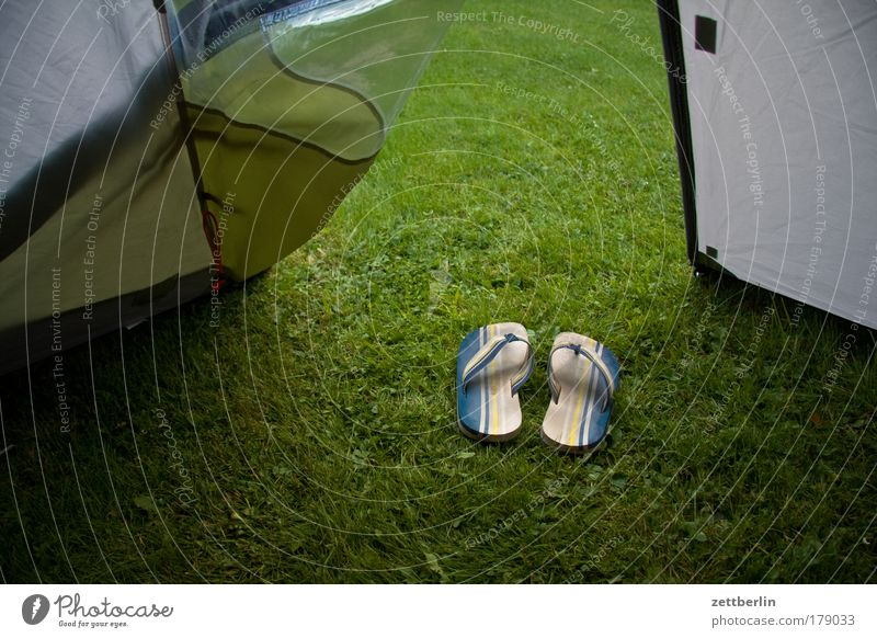 Summer Vacation & Travel Grass Footwear Walking Clothing Lawn Tourism Travel photography Grass surface Entrance Camping Weather protection Protection Carpet