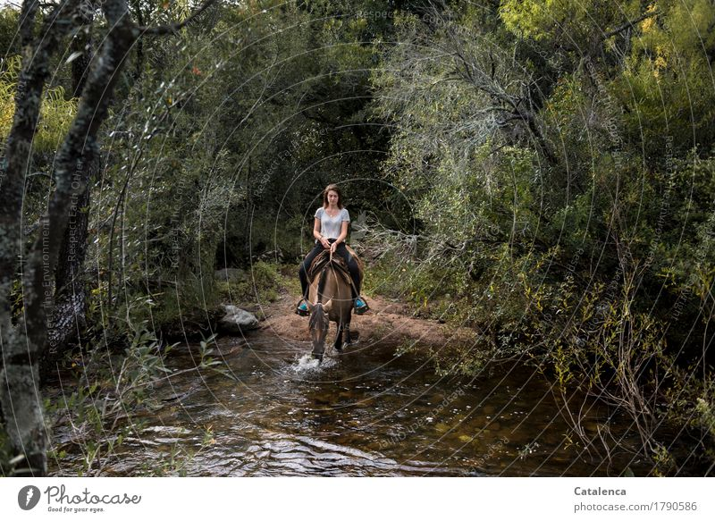 Ride through the tunnel Feminine Young woman Youth (Young adults) 1 Human being 18 - 30 years Adults Nature Plant Animal Summer Tree Bushes Moss Wild plant