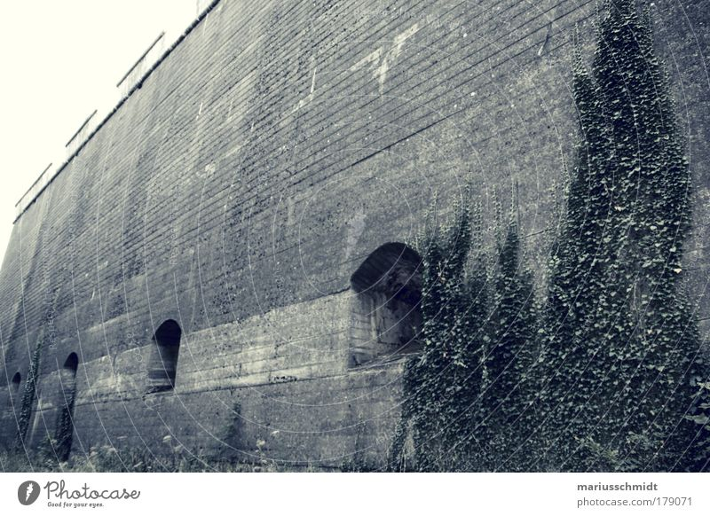 Old Calm Dark Cold Wall (building) Emotions Gray Wall (barrier) Architecture Rock Facade Safety Gloomy Authentic Threat