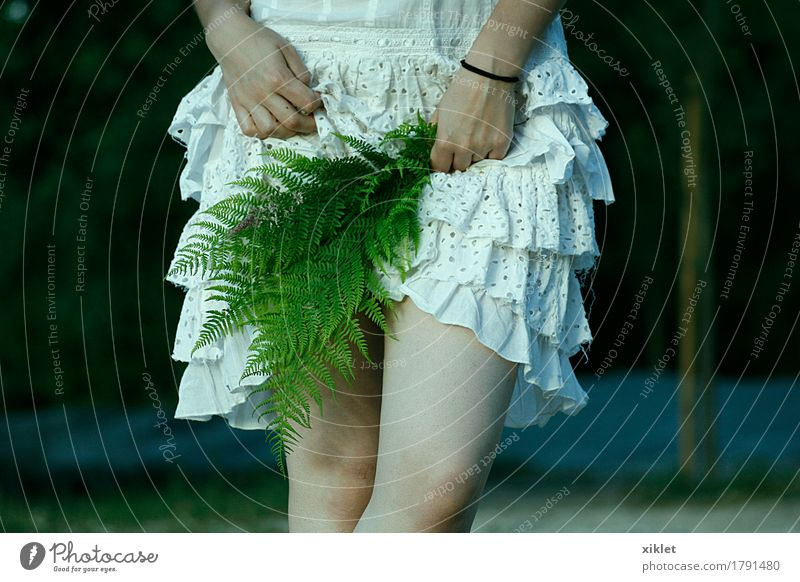 ferns woman Woman Legs White Dress Fern Plant Hide Thin ruffles Eroticism Hand Green Style Nature Knee Self-confident Joke Wedding Young woman